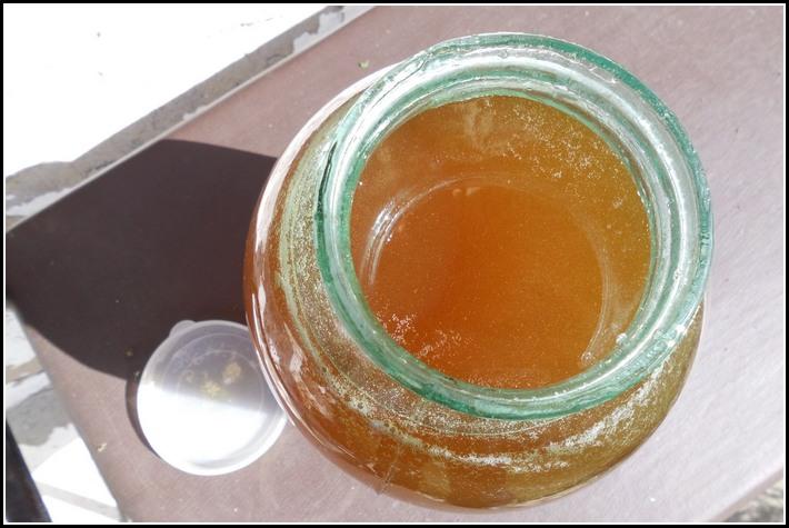 мёд от пчёл